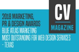 Most Outstanding for Web Design - Texas